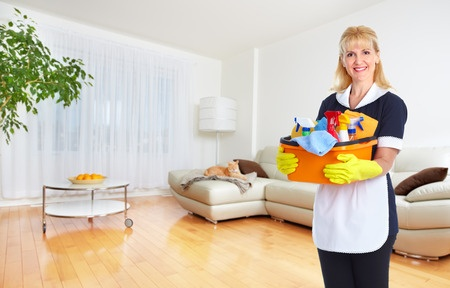 Domestic Cleaning Company in Surrey UK