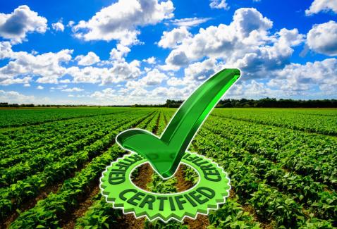 Introducción a la Agricultura Sostenible, Calidad, Inocuidad y Buenas Prácticas Agropecuarias en agromooc
