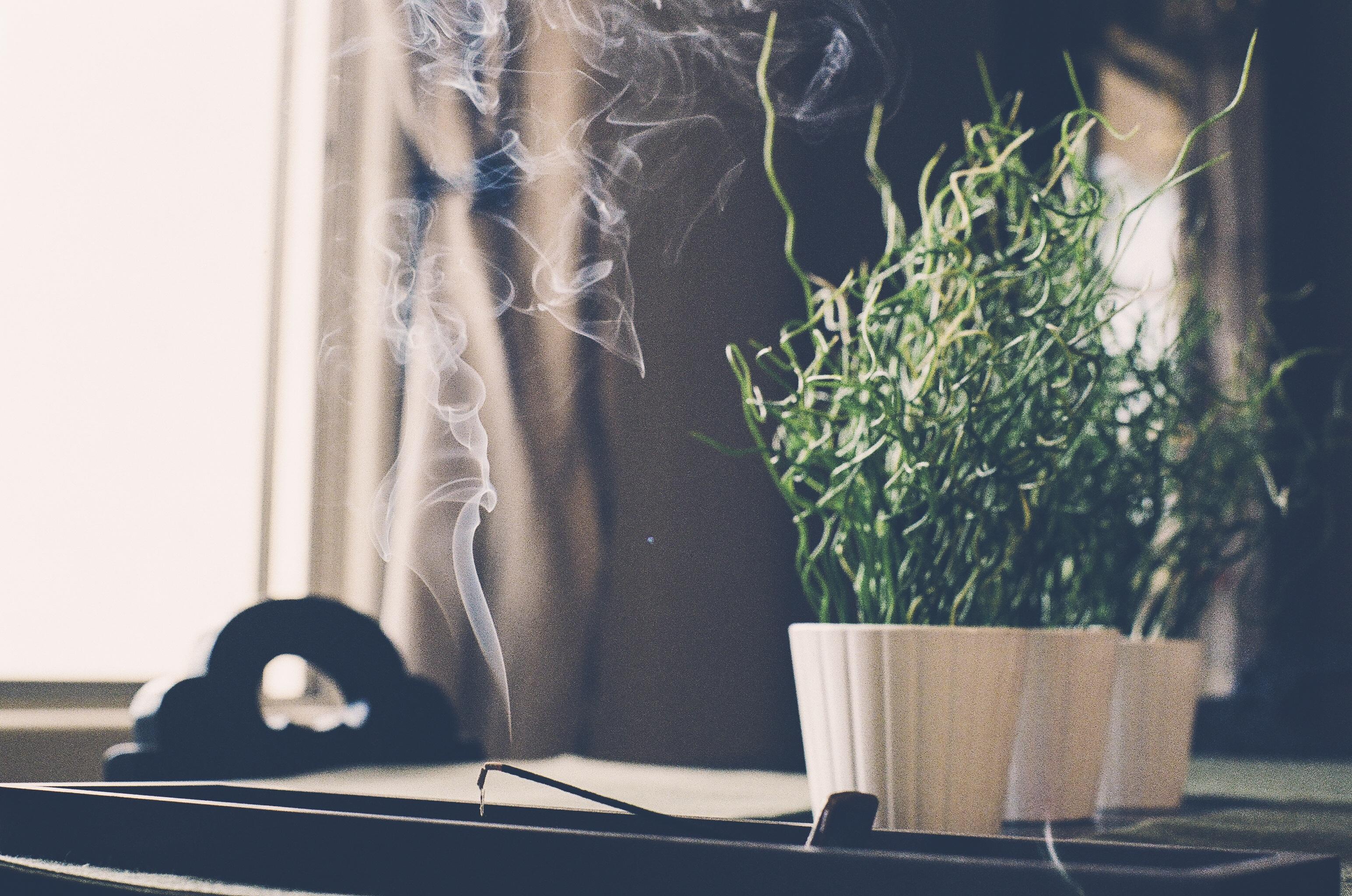 Rökelse och växter på ett bord