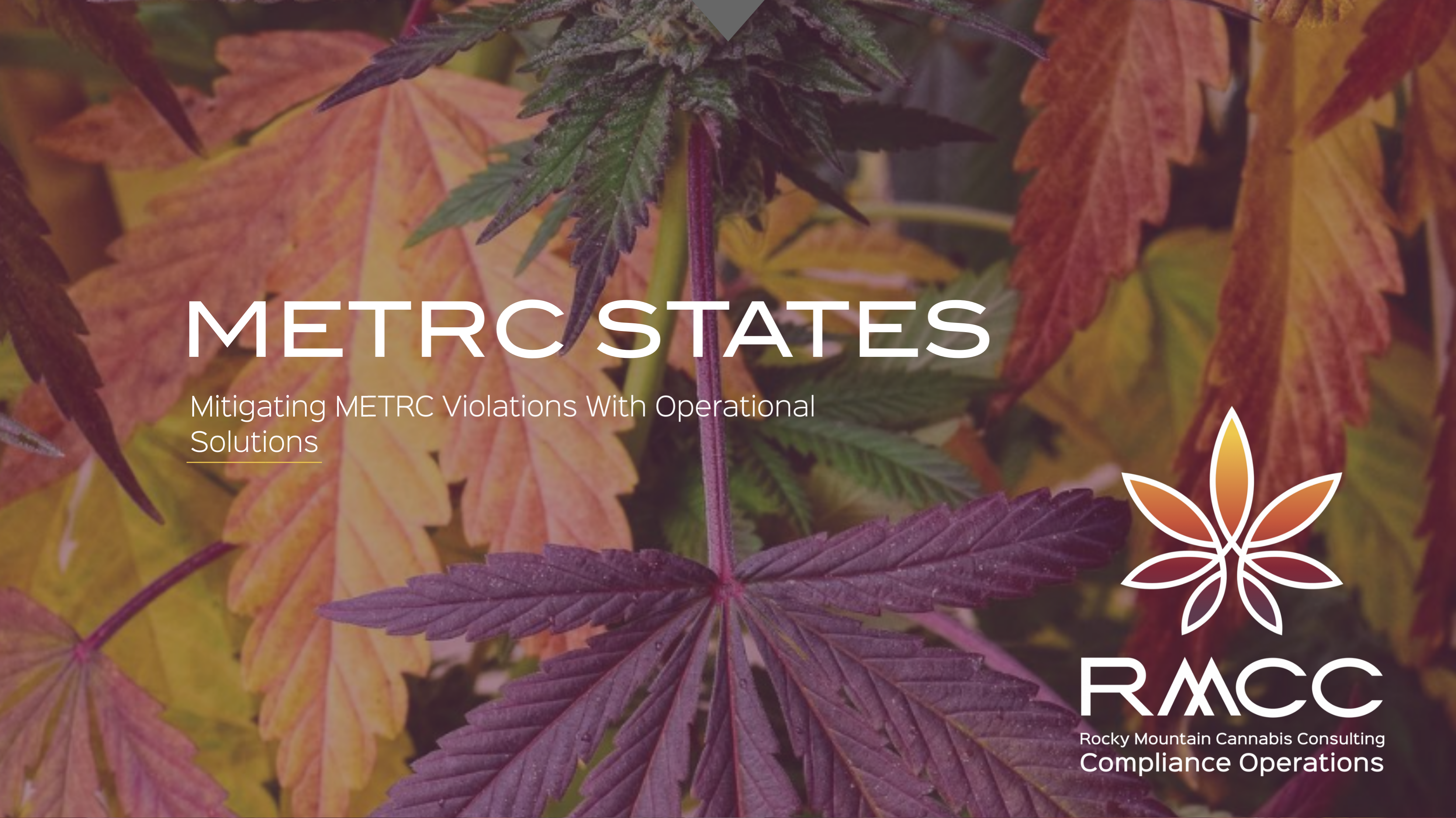 METRC STATES MITIGATING METRC VIOLATIONS WITH OPERATIONAL SOLUTIONS