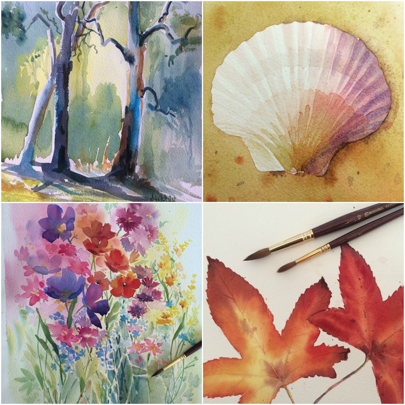 Watercolour painting collage - Learn to paint in watercolour with Jenny Gilchrist and Northern Beaches Watercolour.