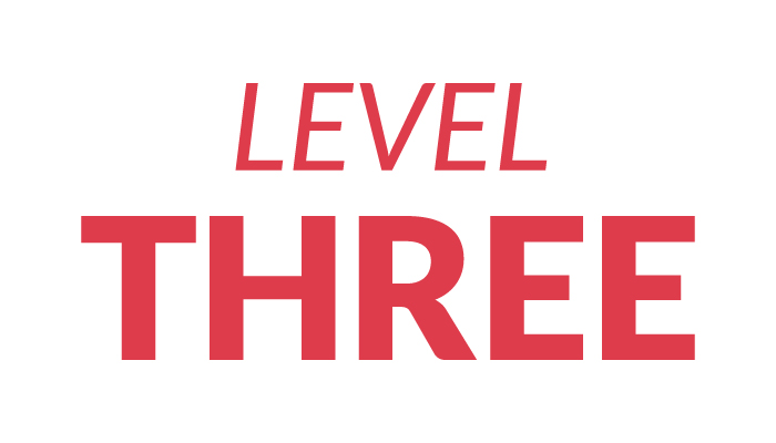Level Three Training