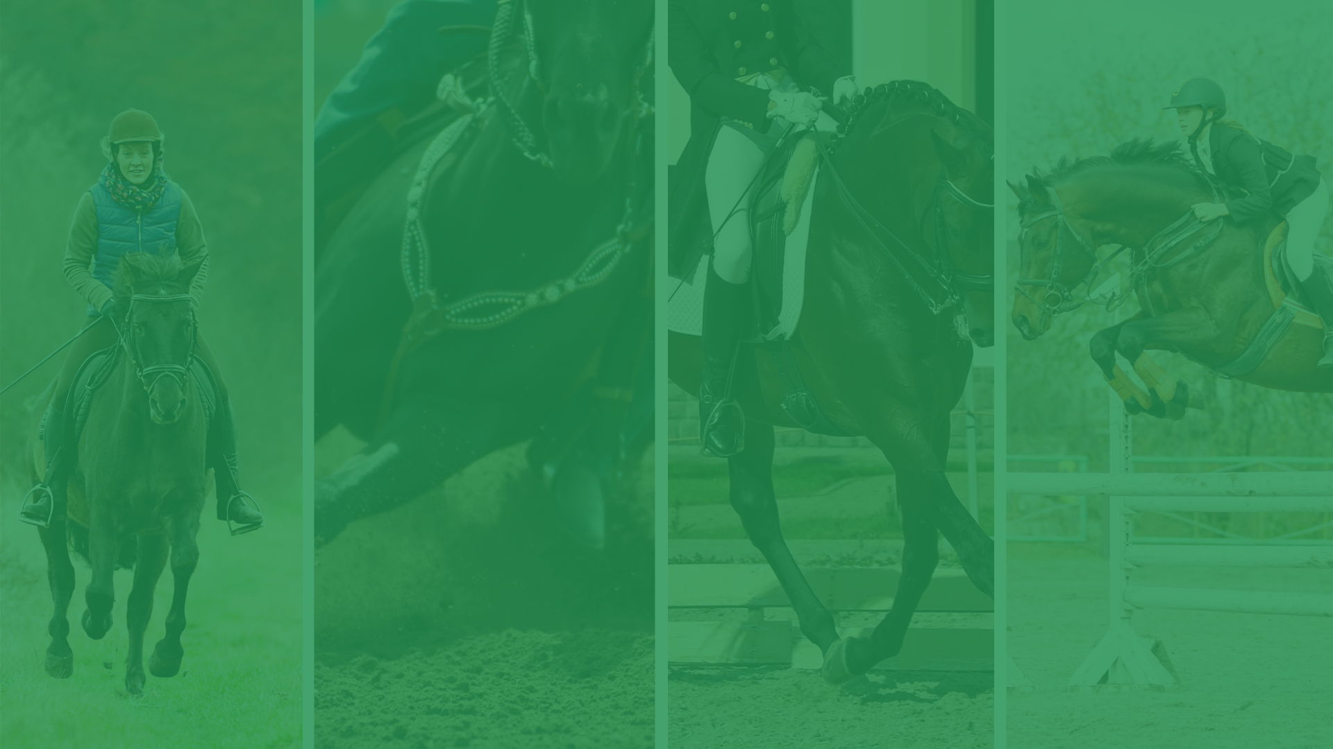Four images of equestrians in different sports