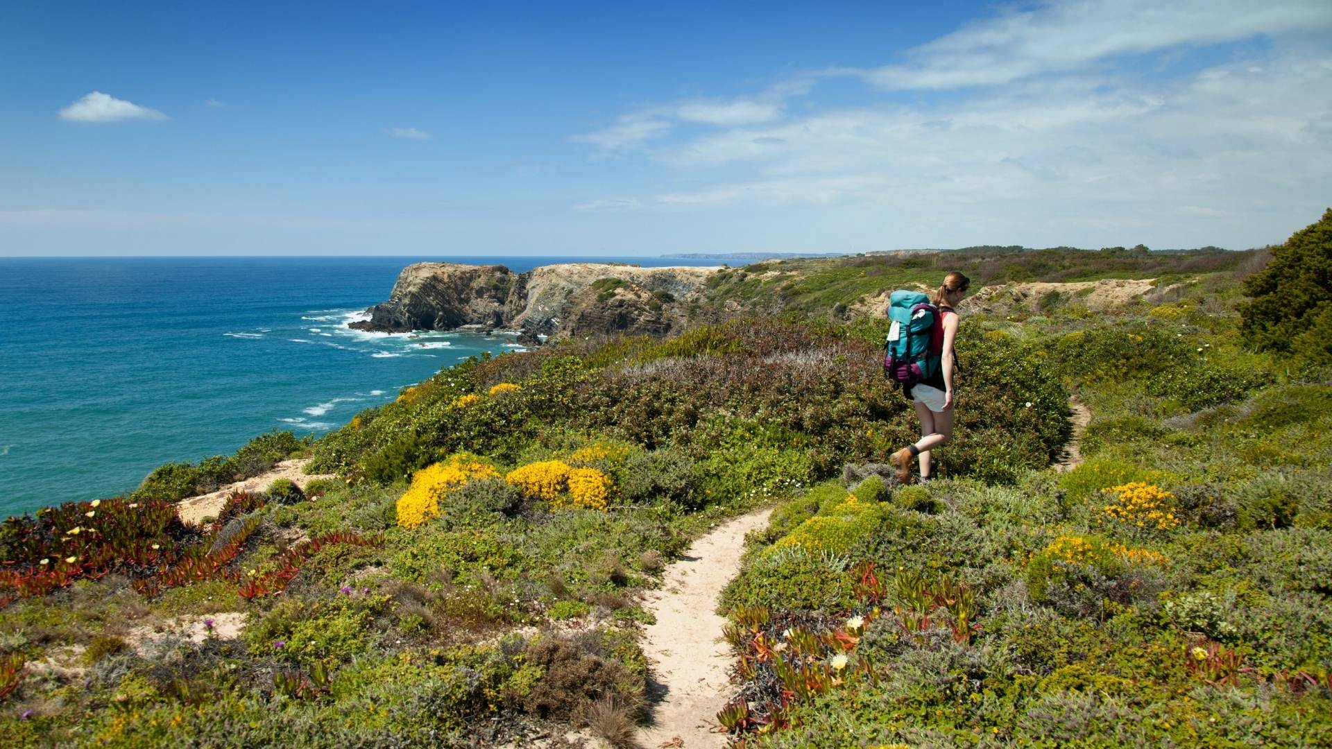online hiking classes