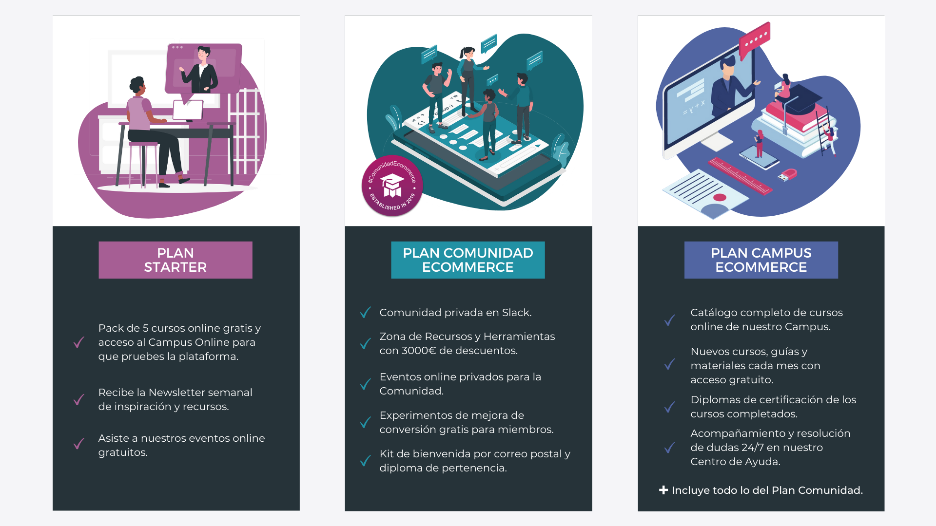 Planes de acceso a Universidad Ecommerce