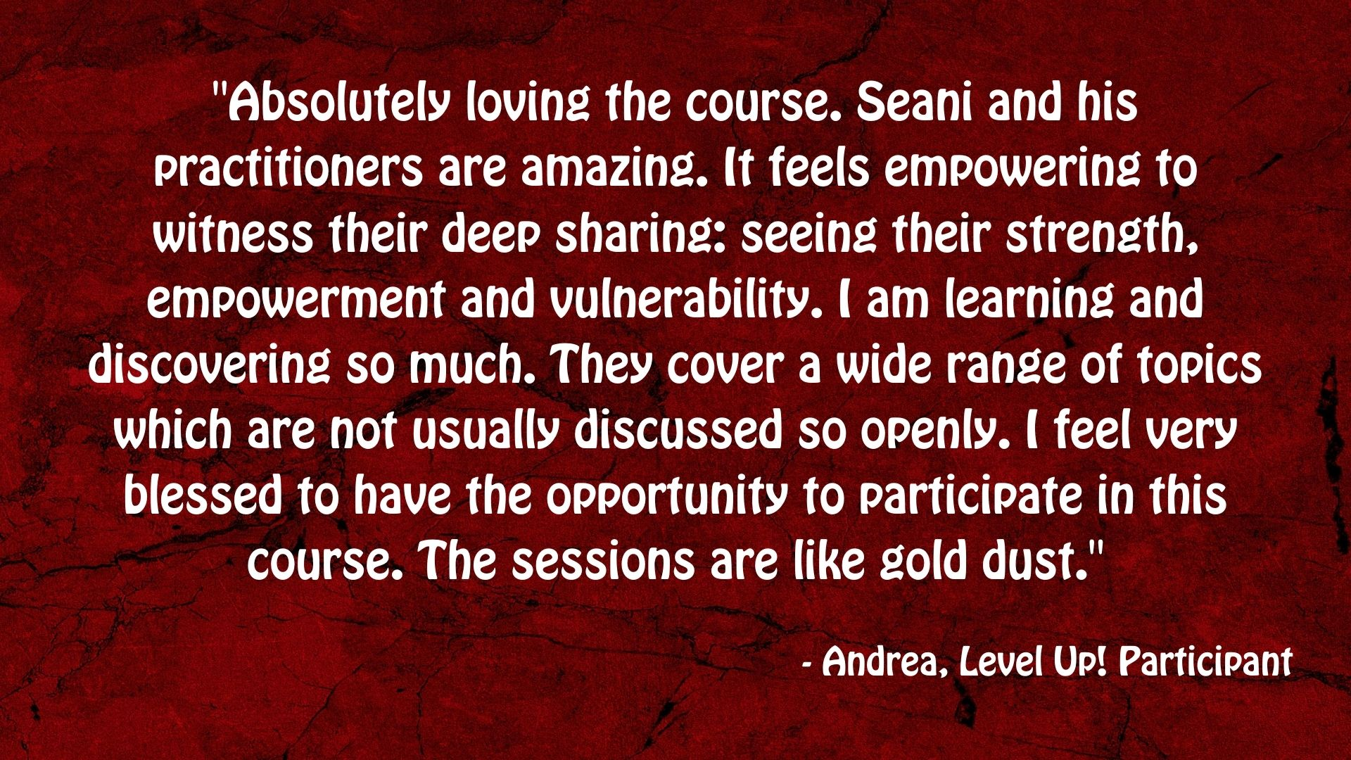 A testimonial from one of our Level Up participants