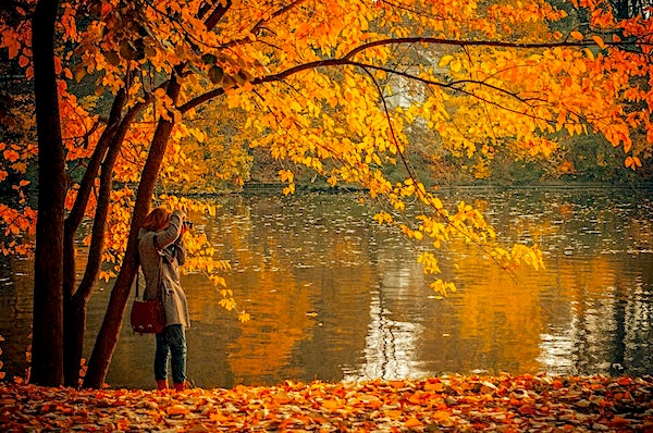 Autumnal scene of a lake with a woman taking a photo underneath a tree with beautiful foliage
