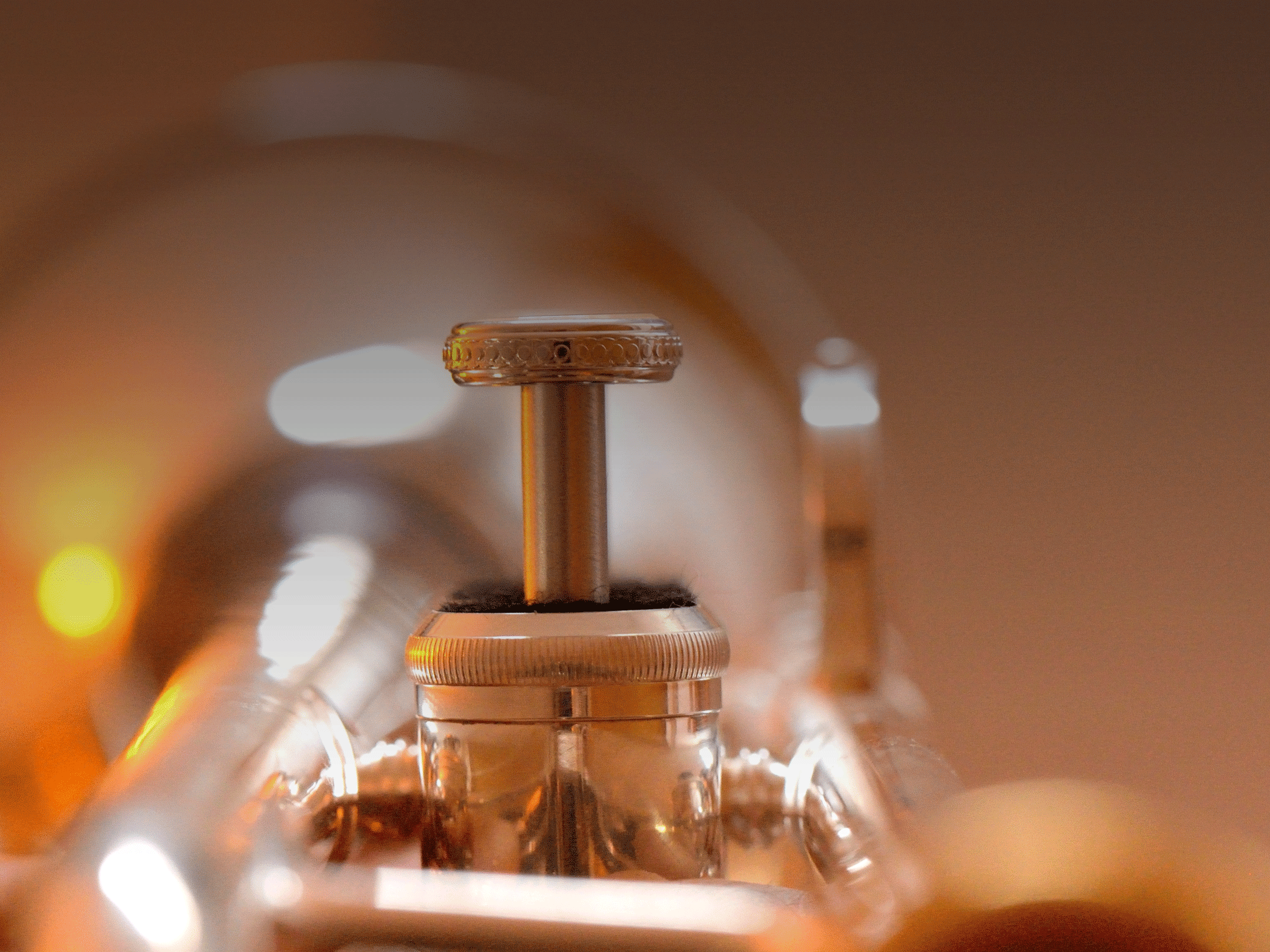 Closeup of a flugelhorn valve