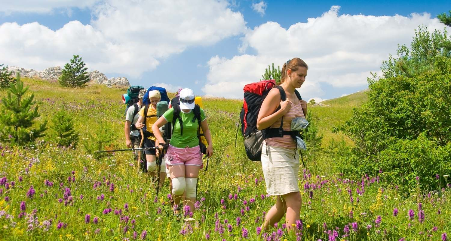 hiking for beginners, hikers in a field with wildflowers