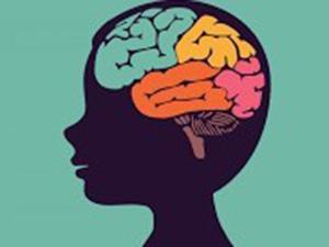 cartoon of a child's brain