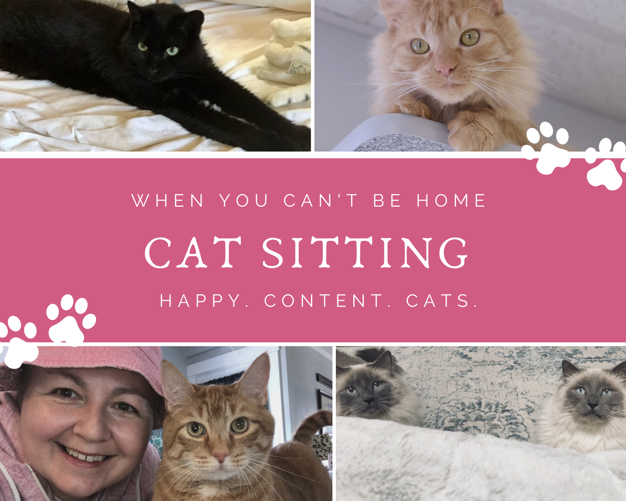 Cat Sitting Services