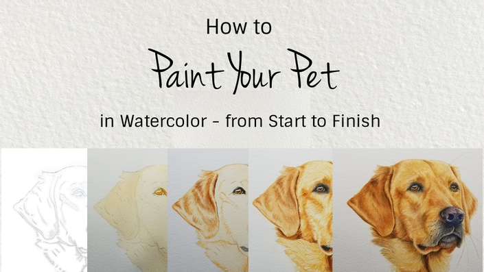 paint your pet in watercolor rebecca rhodes
