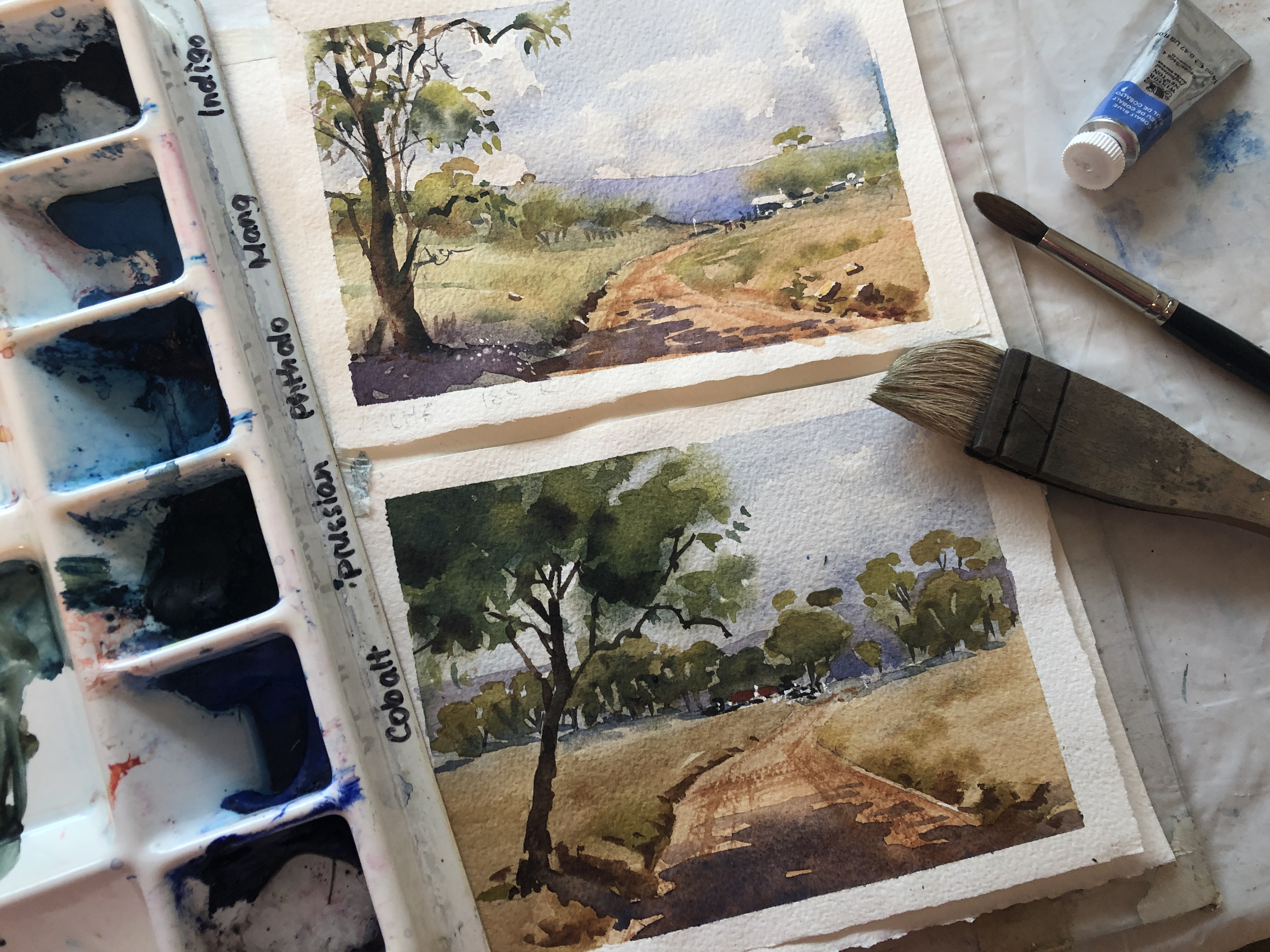 Online Watercolour course for Beginners with Jenny Gilchrist