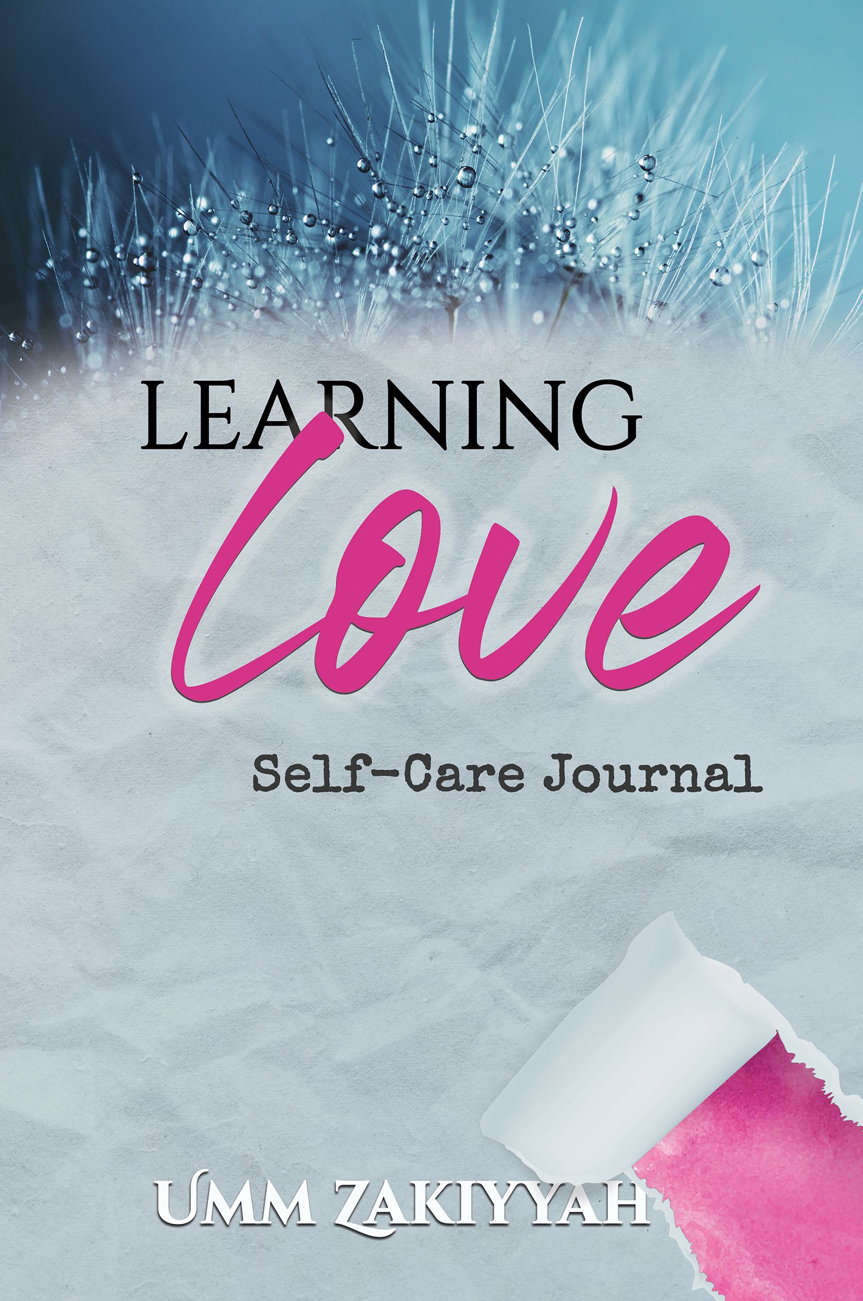 Front cover of Learning Love