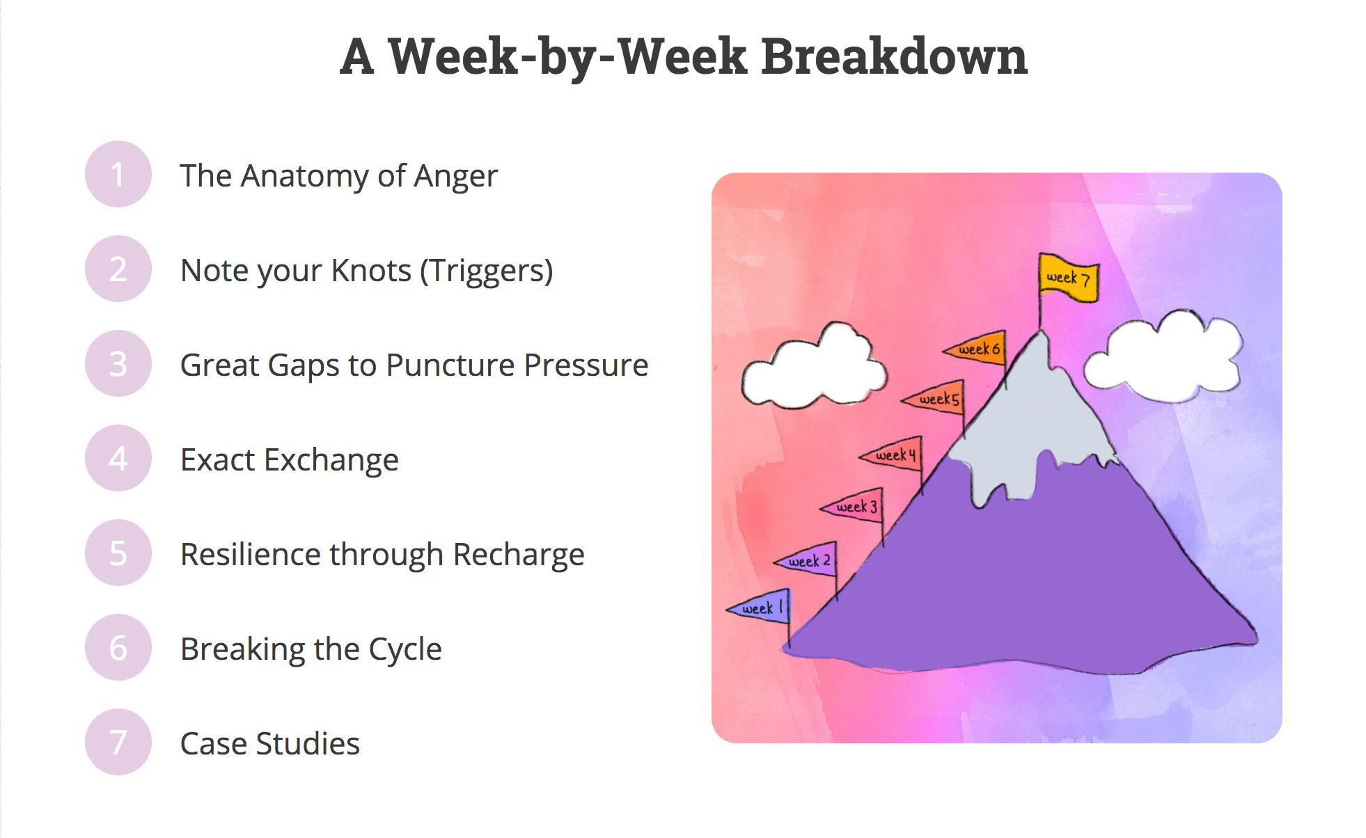 A Week by Week Breakdown