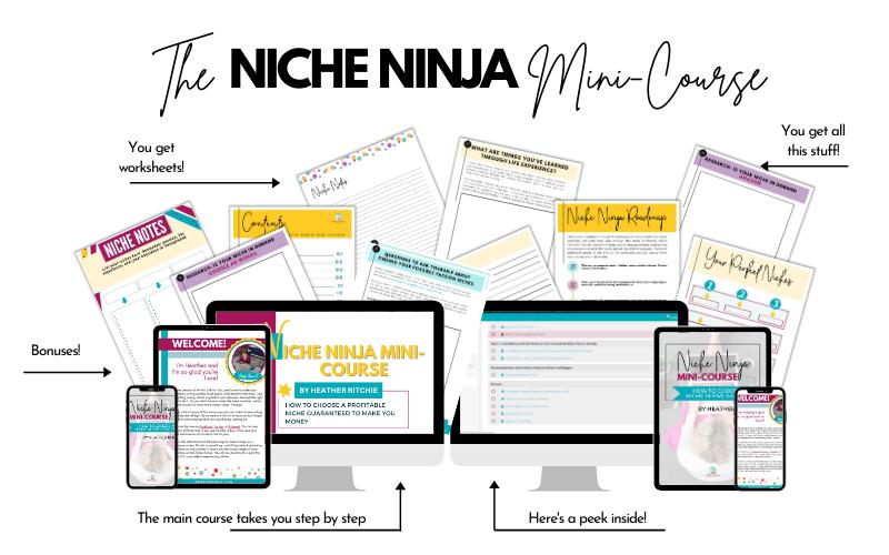 Niche Ninja Mini-Course contents