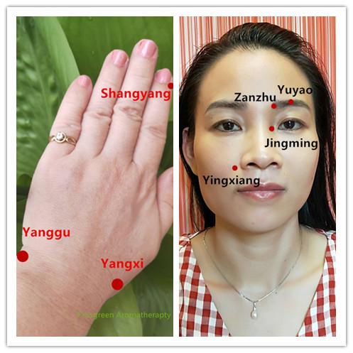 Facial Meridian Massage Online Class