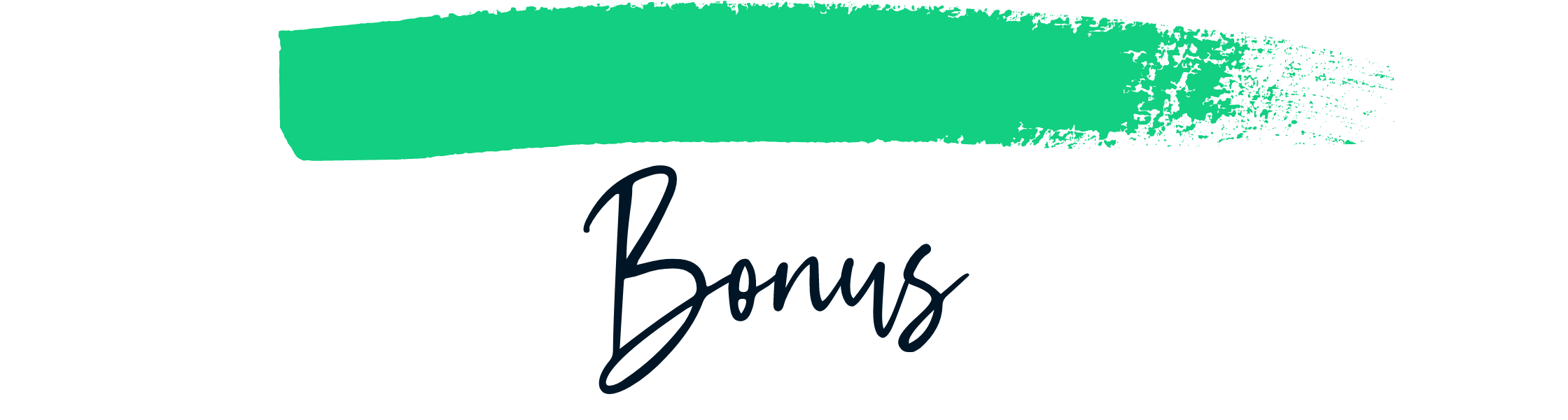 Bonus Sustainable Style Book