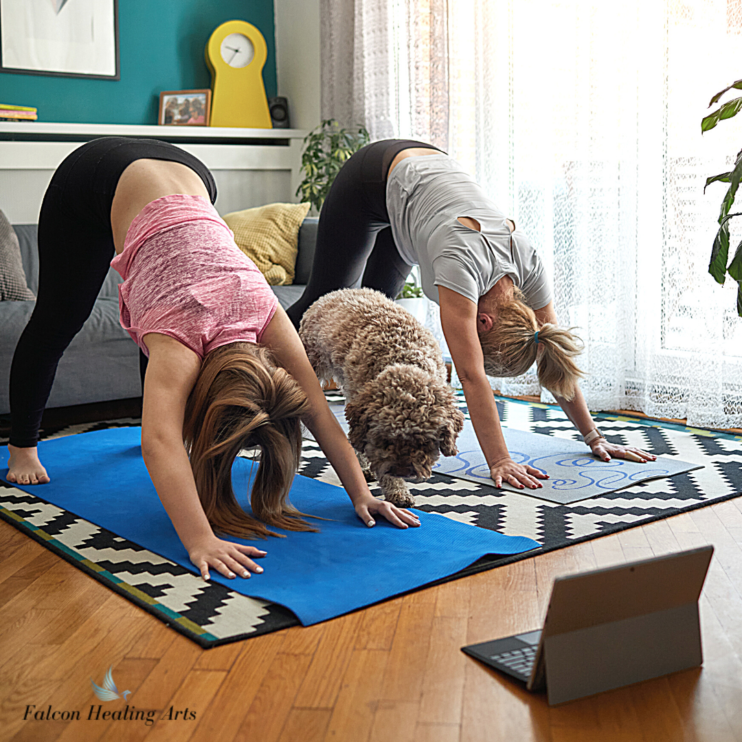 family home yoga with dog