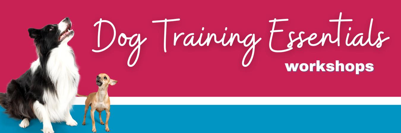 virtual dog training workshops
