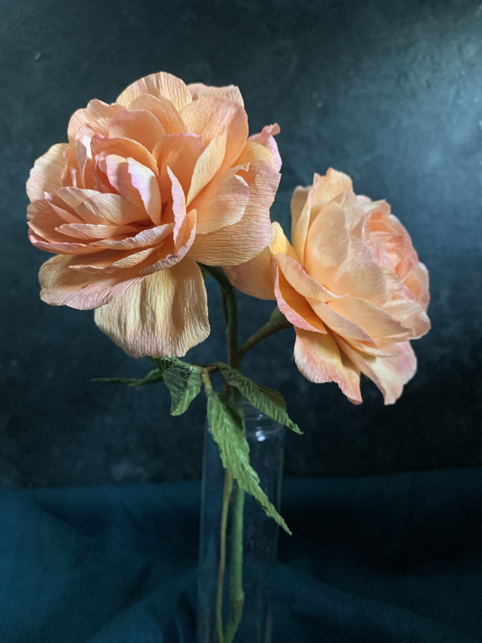 Lady of Shalott Rose