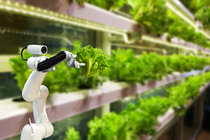 Online Training Artificial Intelligence (AI) in the Food Supply Chain