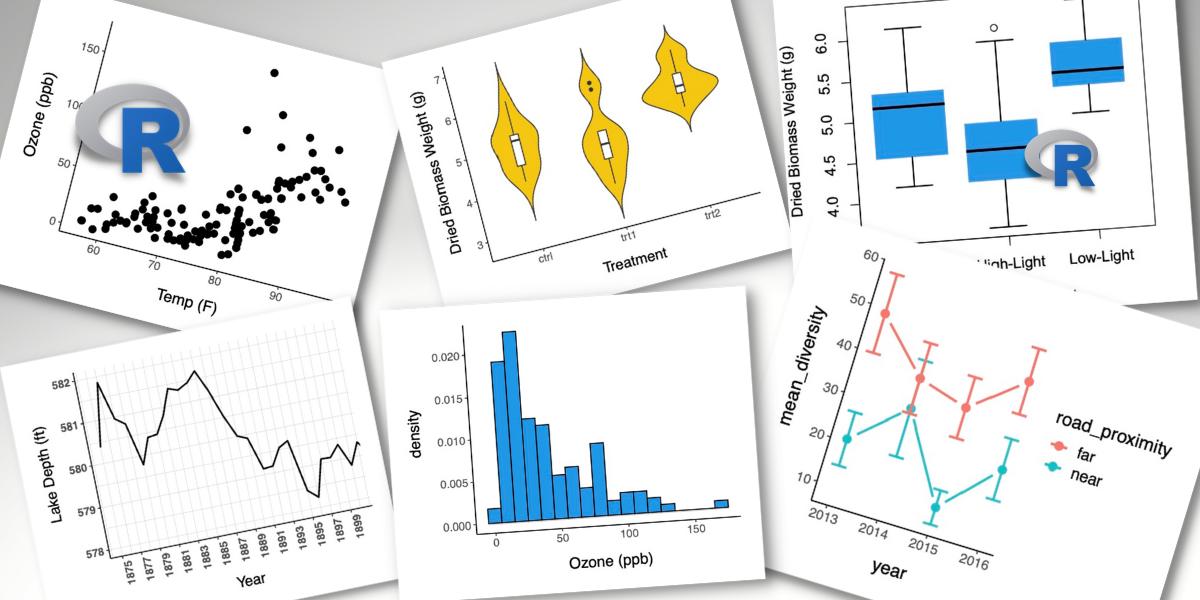 Six data visualizations including a scatterplot, boxplot, violin plot, line plot, and histogram