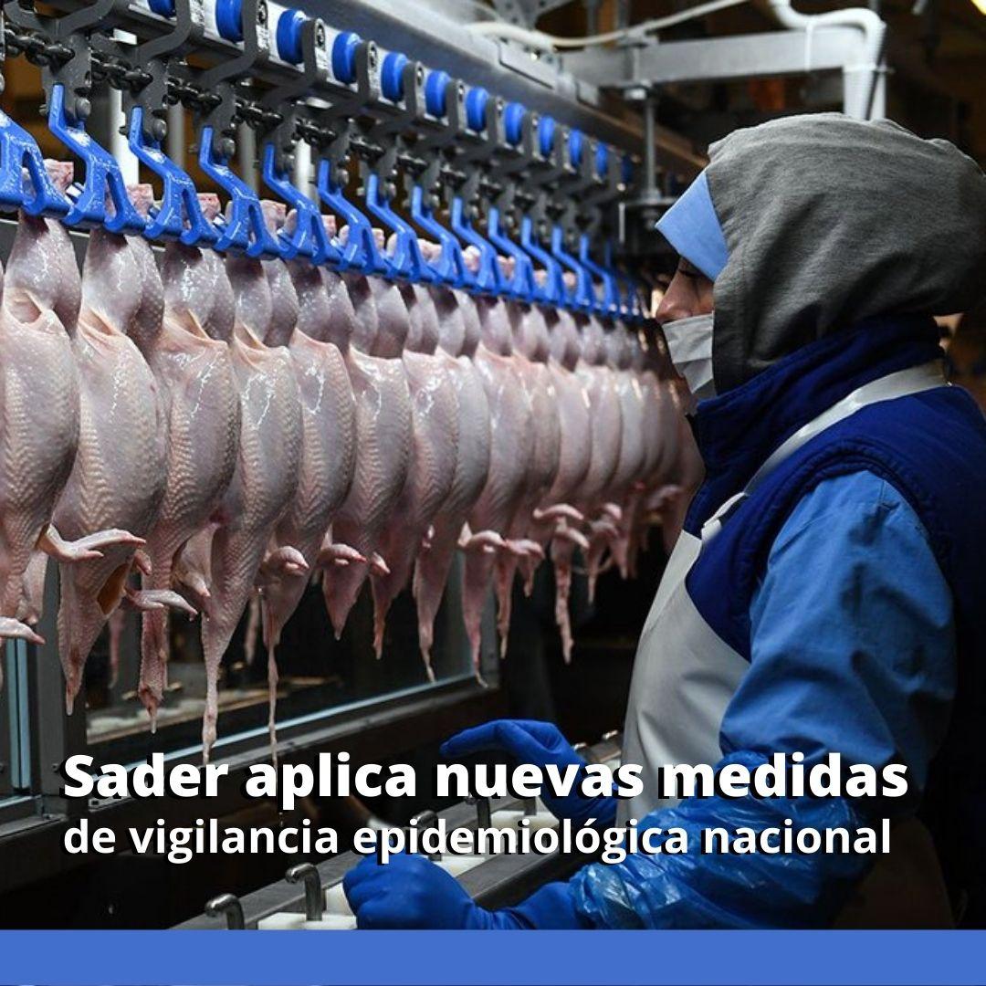 Sader aplica nuevas medidas de vigilancia epidemiológica nacional