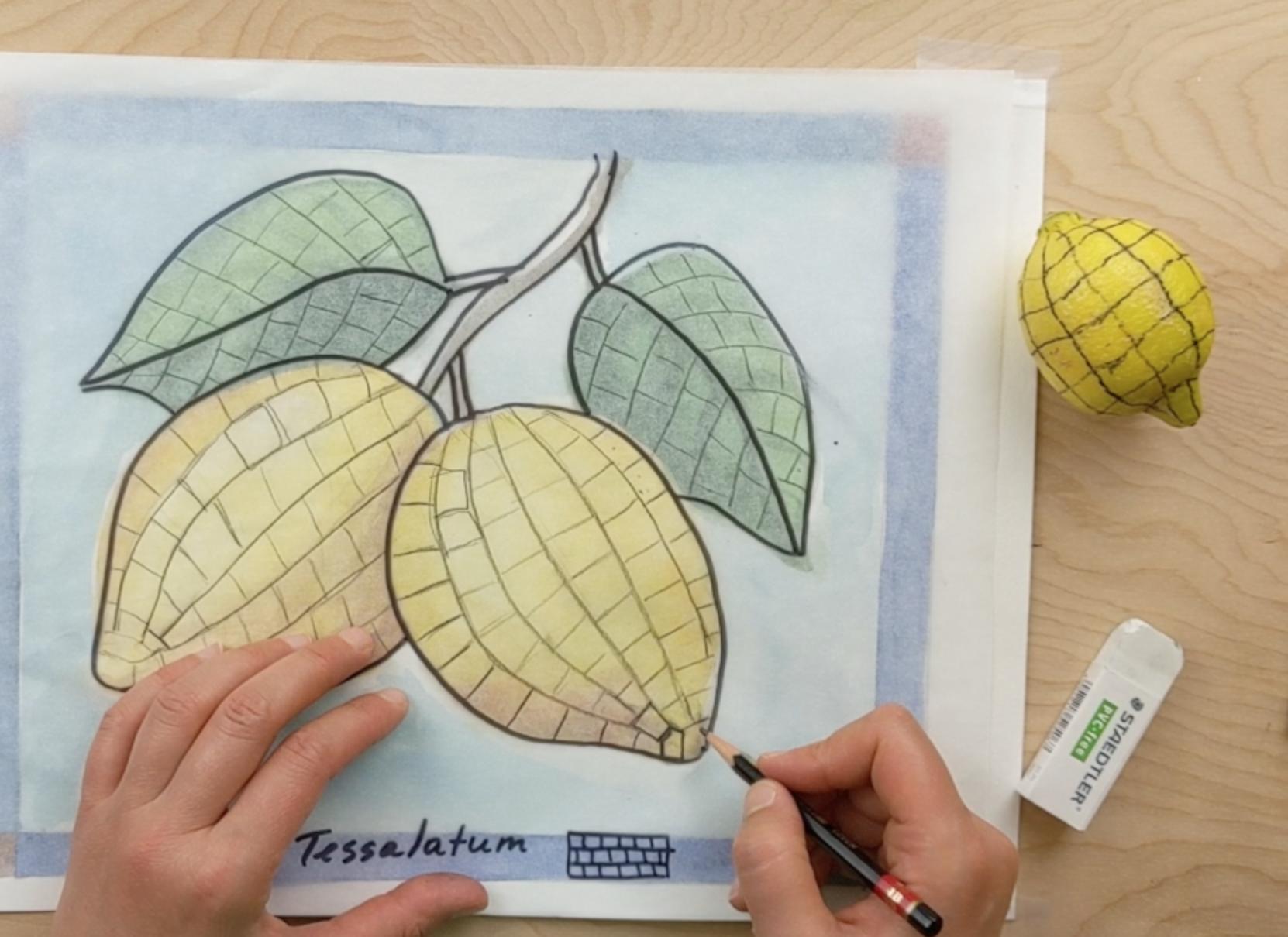 lemons mosaic layout