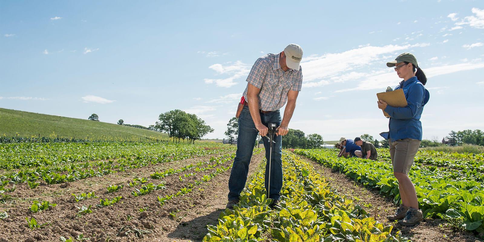 Rodale Institute farmers & researchers working in organic fields