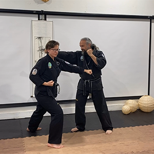 Pair of instructors in kung fu uniforms demonstrating a punch and block sequence.