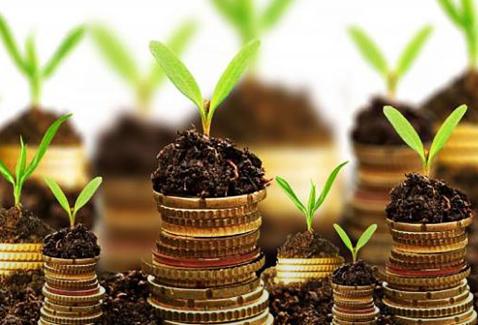 Curso agrofinanzas en agromooc