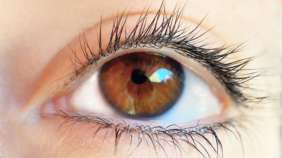 Eyelash Enhancements