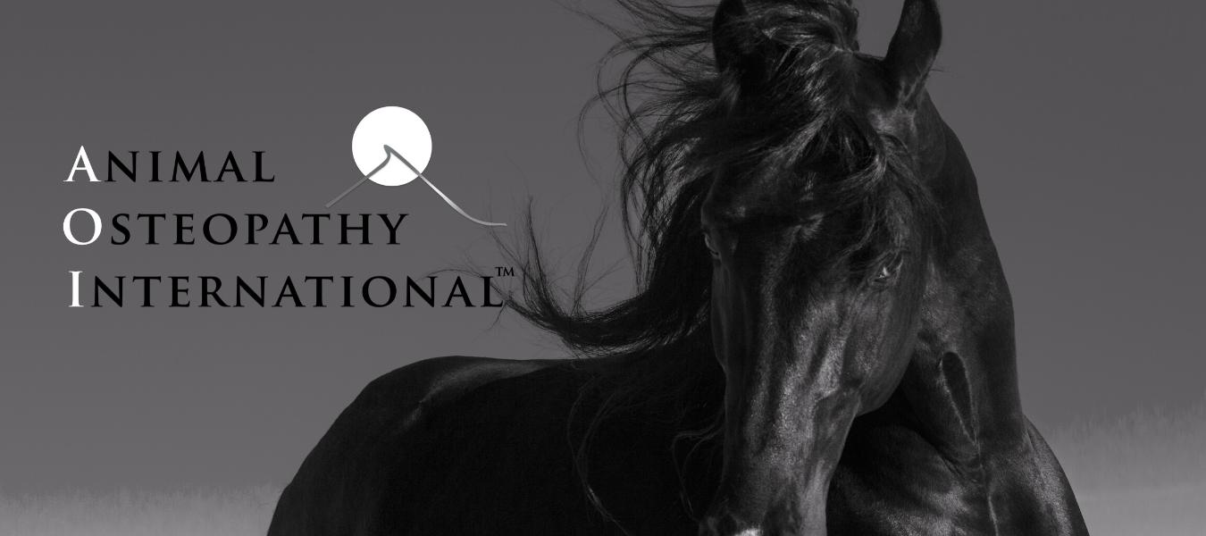 Homepage of animal osteopathy international