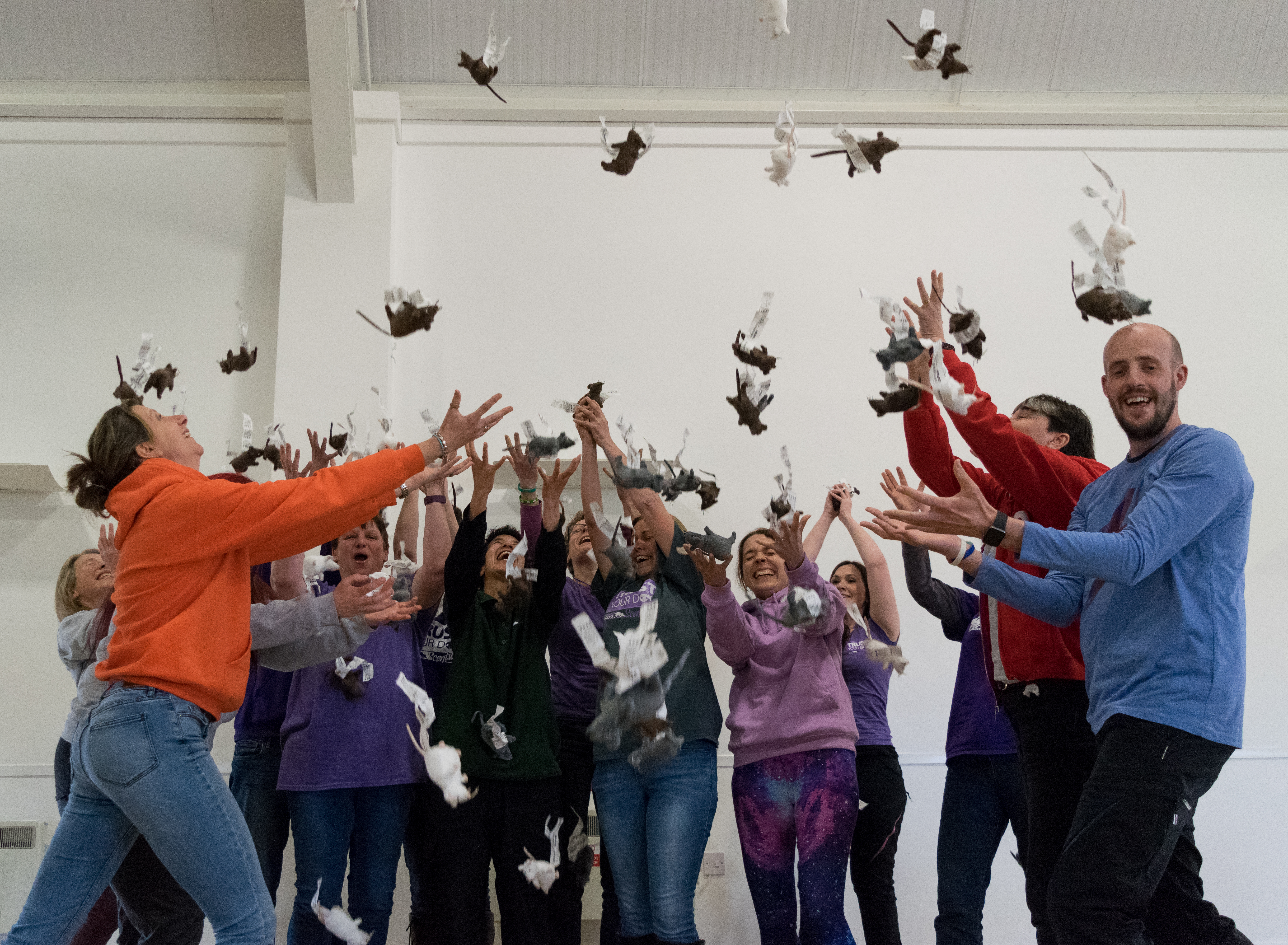 group of trainers catching scentwork mice raining down from the sky