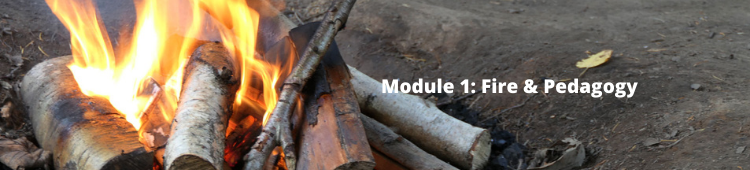 fire and pedagogy online course