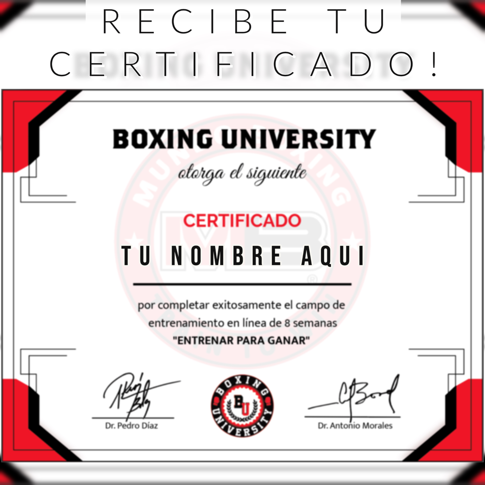 Certificado Boxing University