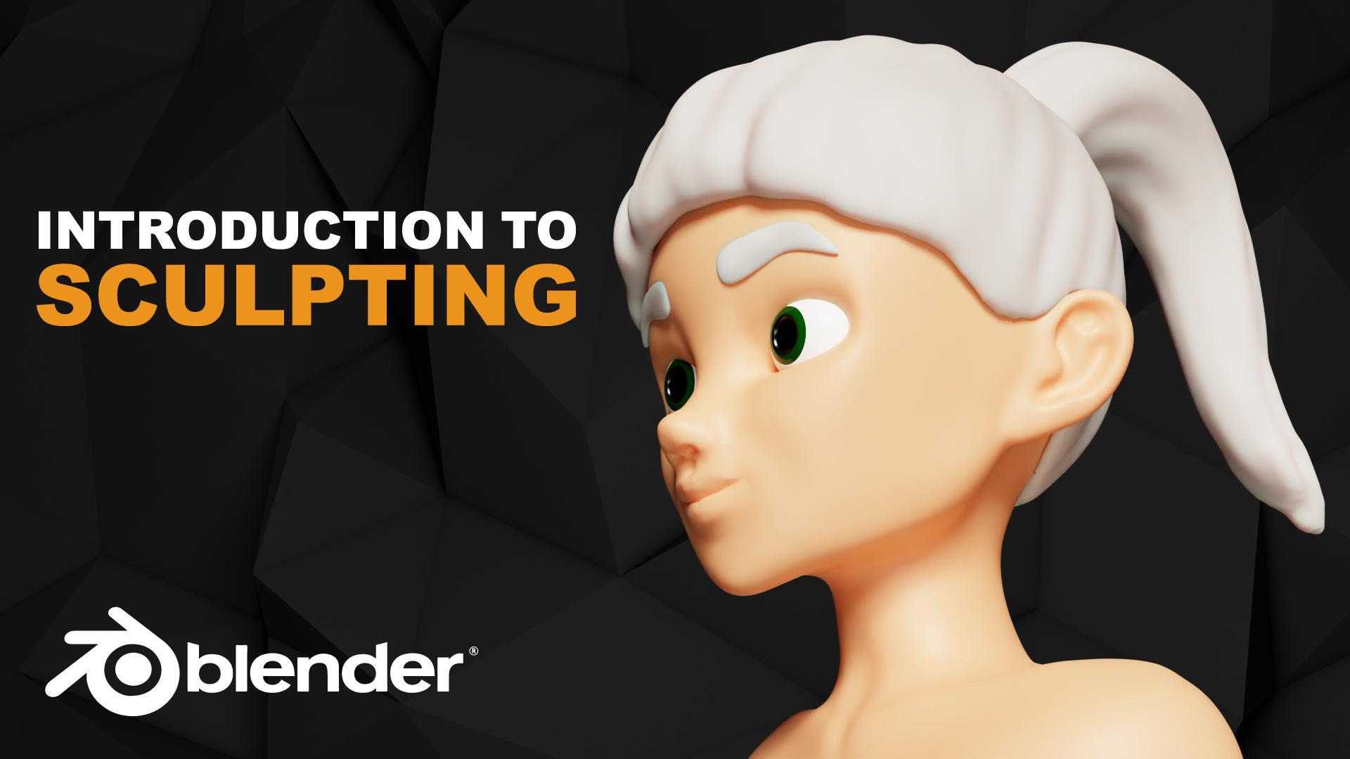 Sculpting Woman Head Introduction Blender Course Academy Beginner