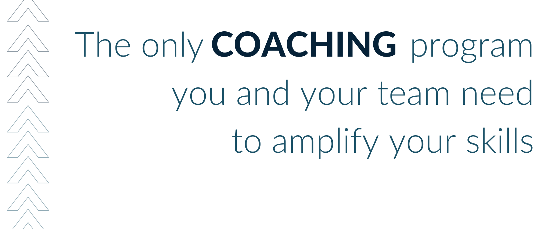 The only coaching program you and your team need to amplify your skills
