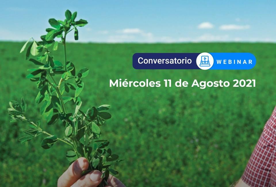 Innovación en la Fertilización y Nutrición en el cultivo de Forrajes
