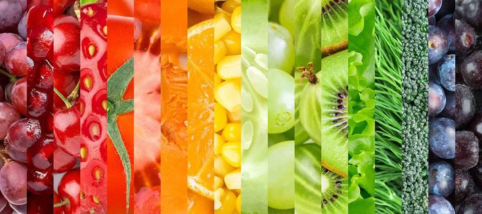 Online Életmódtábor Tejles Értékű Növényi Étrenddel