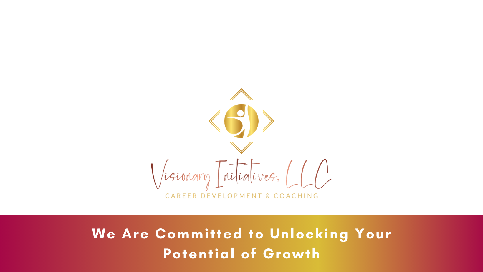 Visionary Initiatives LLC Banner