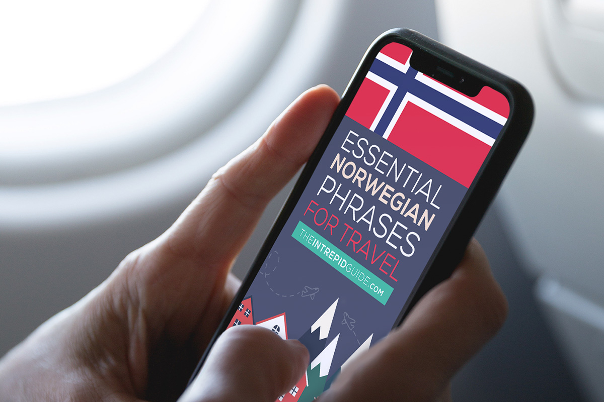 BONUS #2: Essential Norwegian Phrases for Travel ebook (Value: $47)