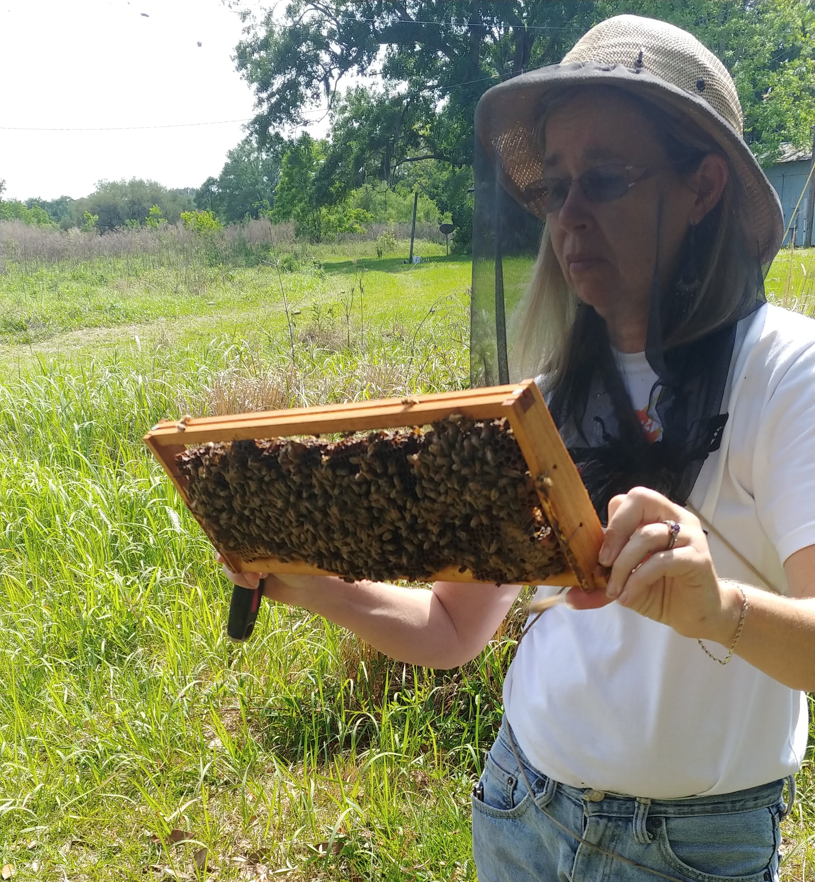 susan holding a box of 20 mated queen bees