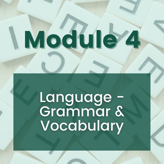 Section 4 - Language - Grammar & Vocabulary