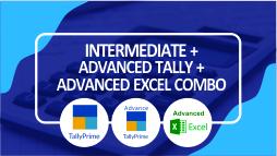 Intermediate + Advanced Tally Prime + Advanced Excel Part I
