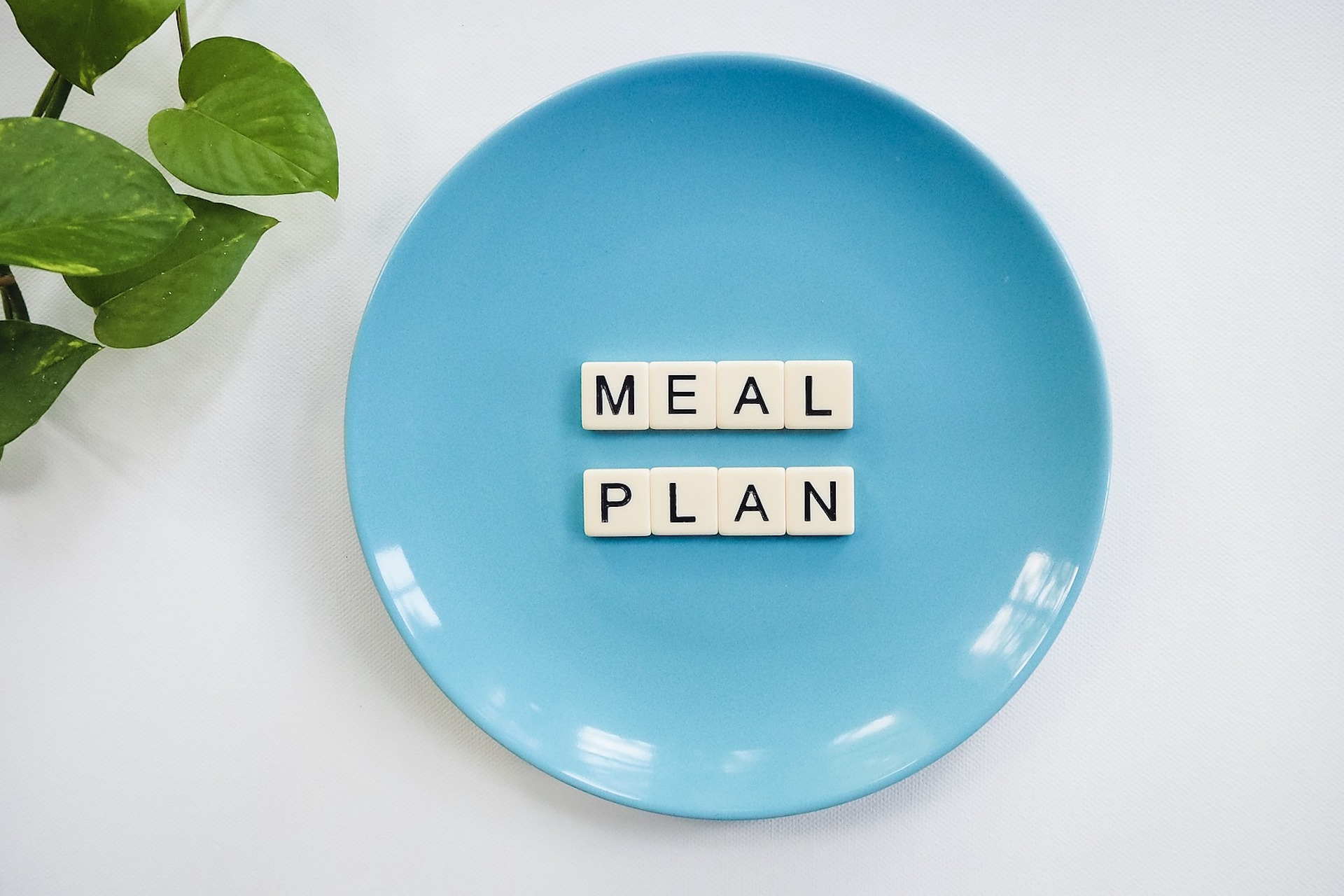 Meal Planning The WellNow Co