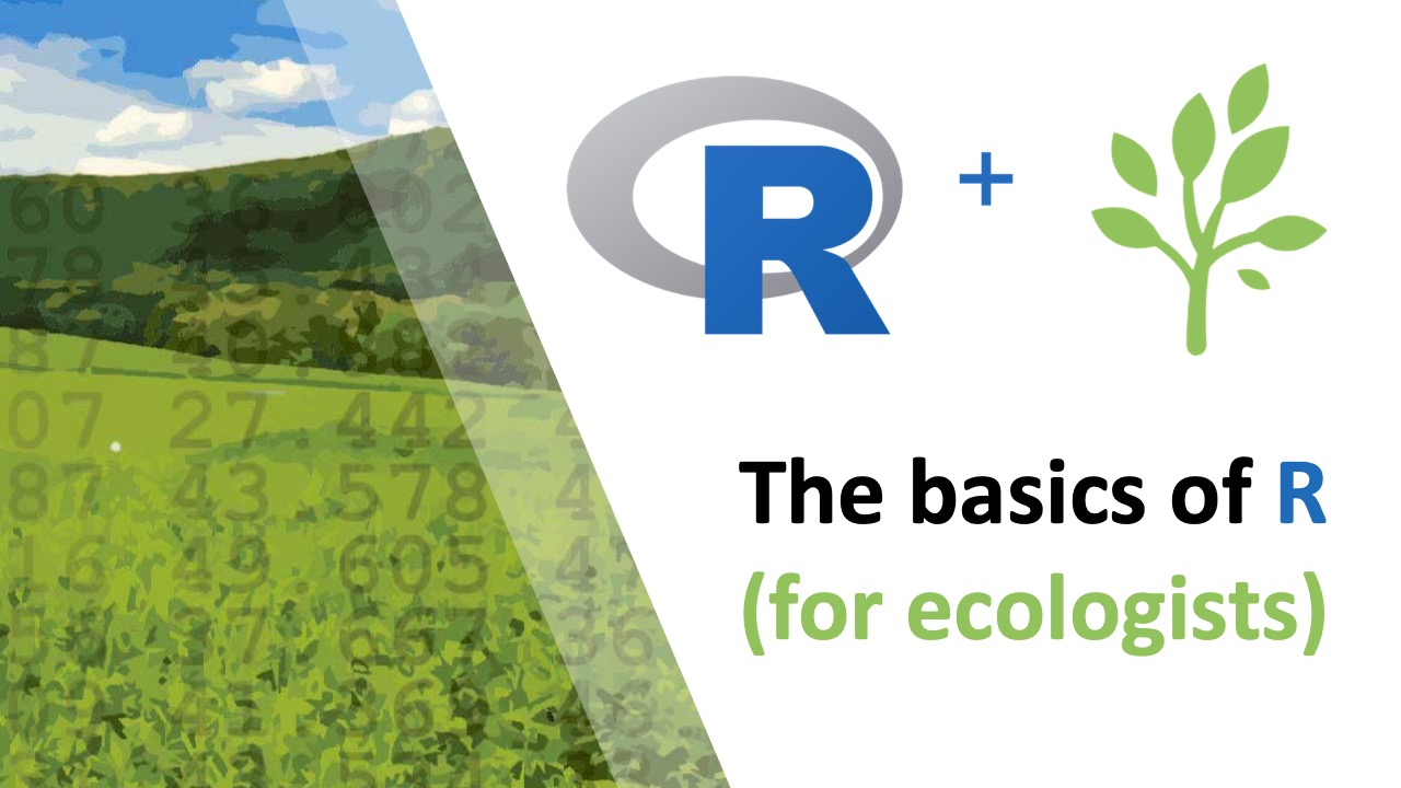 The Basics of R (for ecologists) thumbnail showing the logo and a landscape with numbers