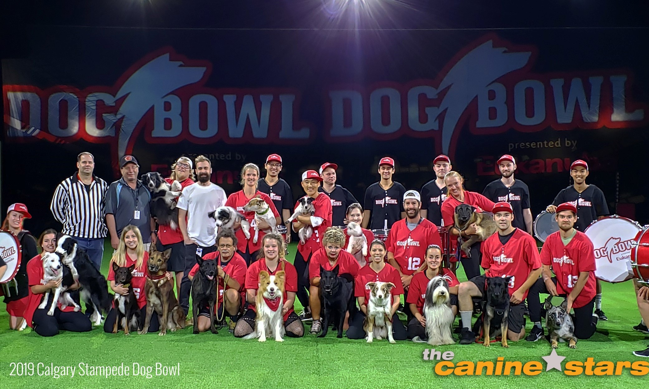 The Canine Stars Team at the Calgary Stampede Dog Bowl