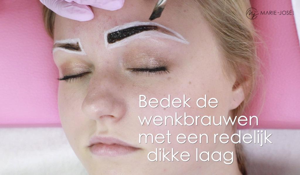Cursus henna brows Nederlands